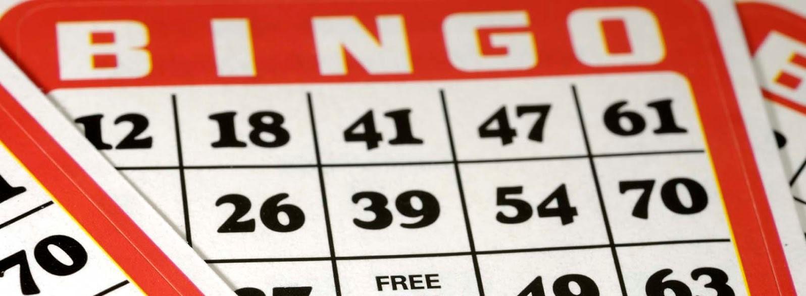 Bingo in het dorpshuis Hippolytushoef | Hollands Kroon Actueel - Hollands Kroon Actueel