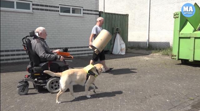 Wijzigingen opslaanFlessendoppen en een estafette voor aanschaf hulphonden