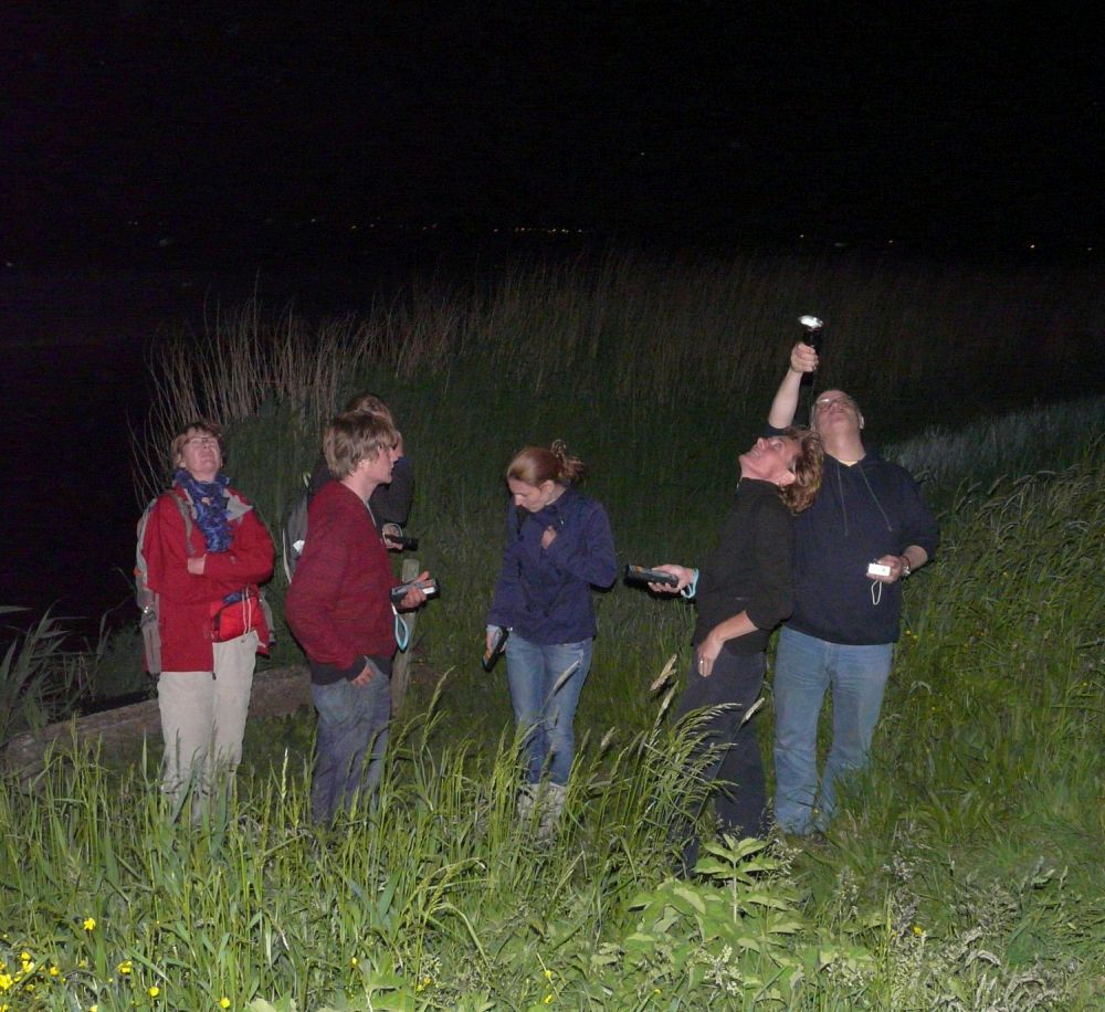 Vleermuisexcursie - foto Landschap Noord-Holland